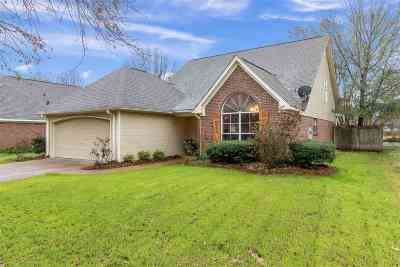 Madison MS Single Family Home Contingent/Pending: $204,900