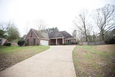 Ridgeland Single Family Home For Sale: 302 White Oak Landing
