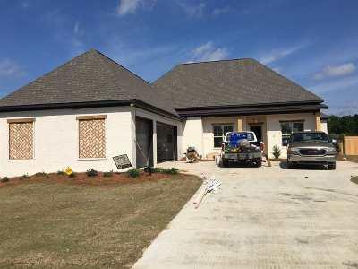 Clinton Single Family Home Contingent/Pending: 106 Twain Trail