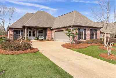 Rankin County Single Family Home For Sale: 151 Eastside Dr