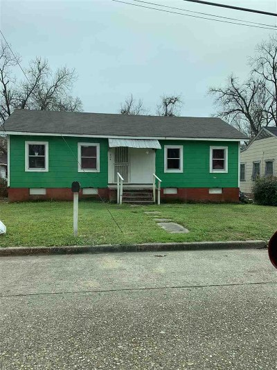 Hinds County Single Family Home For Sale: 405 Dewitt St