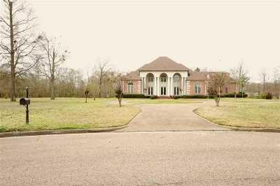 Jackson Single Family Home For Sale: 1219 Hallmark Dr