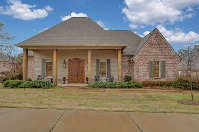 Madison County Single Family Home For Sale: 118 Shore Line Dr