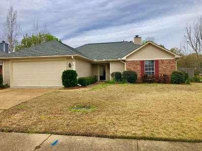 Rankin County Single Family Home For Sale: 100 Willow Oak Ln