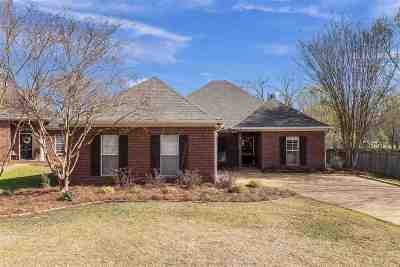 Madison MS Single Family Home For Sale: $244,900