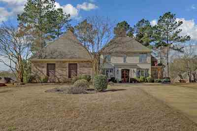 Ridgeland Single Family Home For Sale: 333 Wrenfield Way