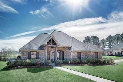 Hinds County, Madison County, Rankin County Single Family Home For Sale: 160 Mullherrin Dr