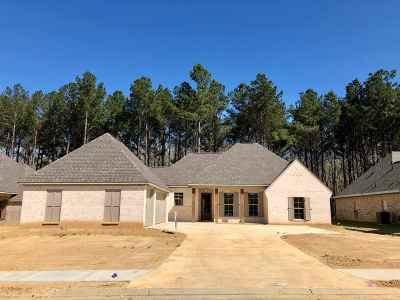 Hinds County, Madison County, Rankin County Single Family Home For Sale: 122 Brisco St