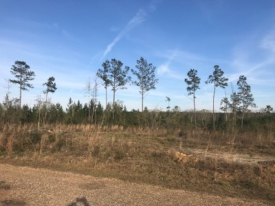 Lincoln County Residential Lots & Land For Sale: 3150c SE Boxwood Ln
