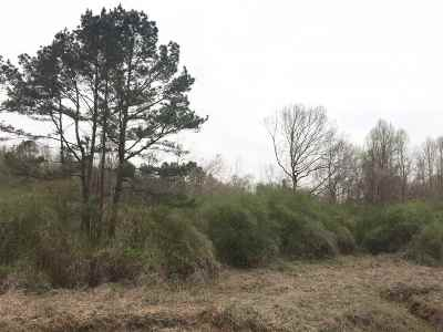 Carthage MS Residential Lots & Land For Sale: $45,000