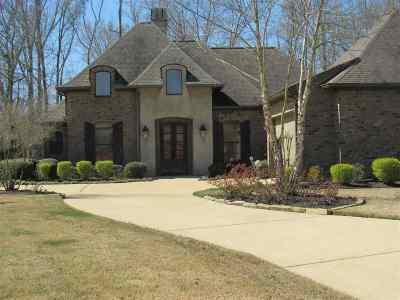 Brandon Single Family Home For Sale: 312 Oakville Cir