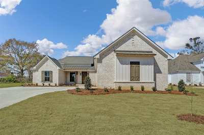 Homes For Sale In Canton Ms 300 000 To 400 000