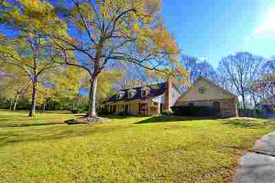 Jackson Single Family Home For Sale: 4042 Venus Ave