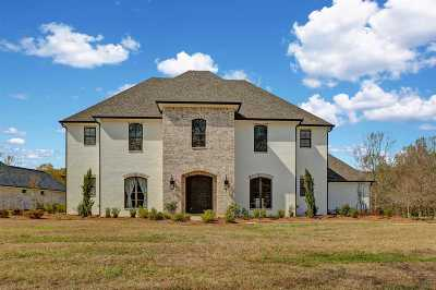 Brandon Single Family Home Contingent/Pending: 119 Fountains Blvd