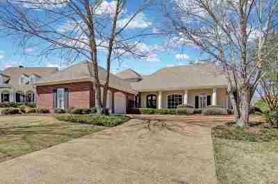 Ridgeland Single Family Home For Sale: 296 Surrey Crossing