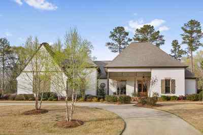 Ridgeland Single Family Home For Sale: 260 Hidden Oaks Dr