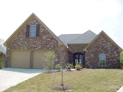 Single Family Home For Sale: 111 Wells Ct