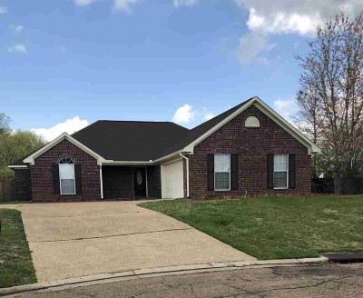 Flowood Single Family Home For Sale: 213 Woodgreen Cv
