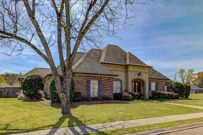 Clinton Single Family Home Contingent/Pending: 121 Copper Creek Dr