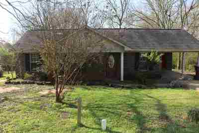 Single Family Home For Sale: 227 Rays Alley