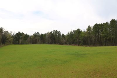 Attala County Residential Lots & Land For Sale: Highway 12 Hwy