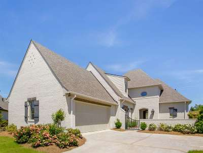 Flowood Single Family Home For Sale: 810 Onyx Pl