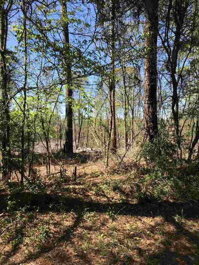 Mendenhall Residential Lots & Land For Sale: Simpson Hwy 149