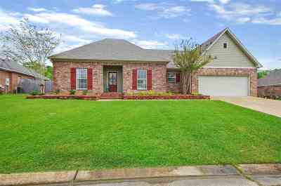 Brandon Single Family Home For Sale: 2003 Old Town Pl