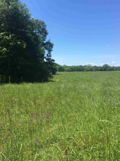 Hinds County Residential Lots & Land For Sale: Hwy 467