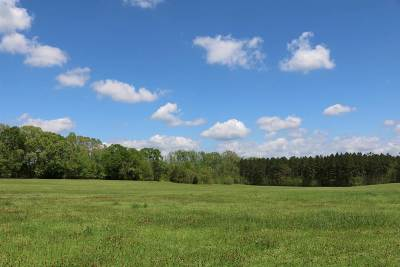 Residential Lots & Land For Sale: 8043 Hwy 61