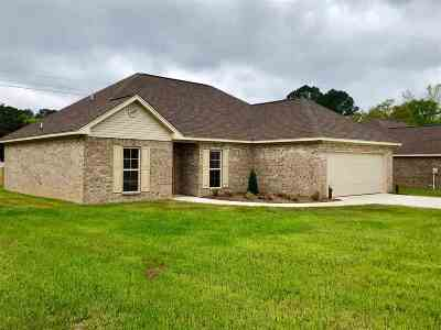 Leake County Single Family Home For Sale: 384 Chenoa Ave