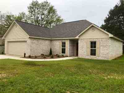 Leake County Single Family Home For Sale: 111 Wiley Dr