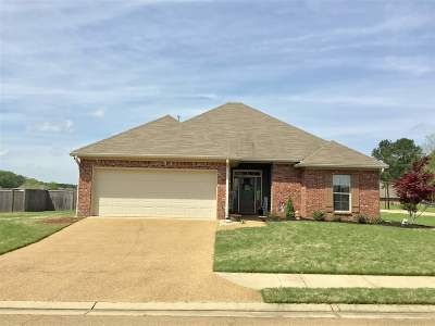 Madison MS Single Family Home For Sale: $215,000
