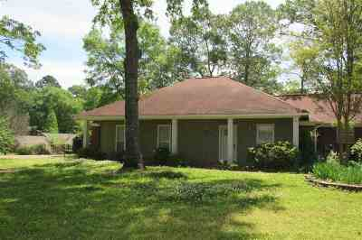 Brandon Single Family Home For Sale: 601 Bay Park Dr