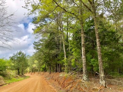 Residential Lots & Land For Sale: Neshoba County Rd 224