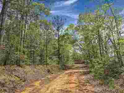 Leake County Residential Lots & Land For Sale: Rocky Point Rd