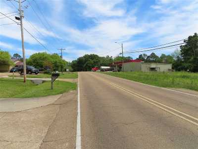 Clinton Residential Lots & Land For Sale: Northside Dr