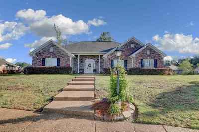 Hinds County Single Family Home For Sale: 300 Barrington Cv