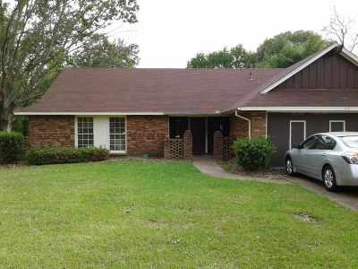 Ridgeland Single Family Home For Sale: 313 Pear Orchard Pl