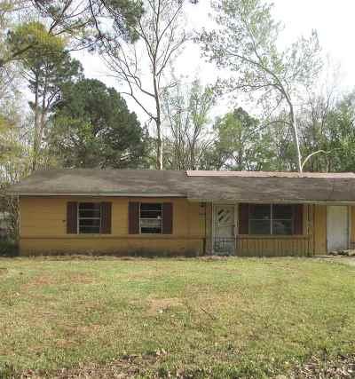 Jackson Single Family Home For Sale: 1059 Deryll St