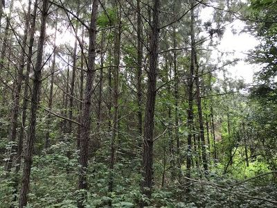 Scott County Residential Lots & Land For Sale: Old Hillsboro Rd