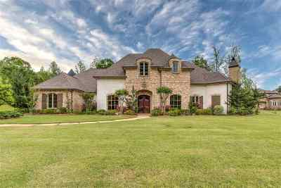 Rankin County Single Family Home For Sale: 713 Inheritance Pl