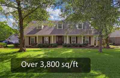 Brandon Single Family Home For Sale: 204 Remington Dr