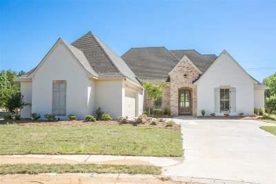 Flowood Single Family Home For Sale: 303 Morning Star Cv