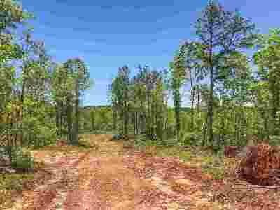 Attala County Residential Lots & Land For Sale: Attala County Road 5003