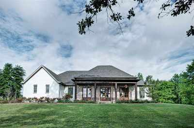 Rankin County Single Family Home For Sale: 138 Sky Lake Dr