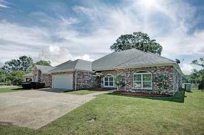 Brandon Single Family Home For Sale: 383 Bradford Dr