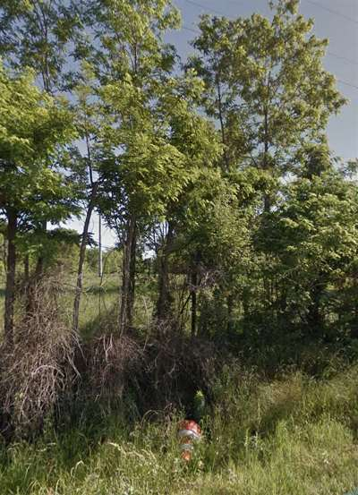 Ridgeland Residential Lots & Land For Sale: Ford St