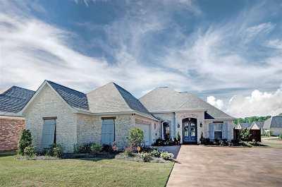 Flowood Single Family Home For Sale: 913 Abundance Xing