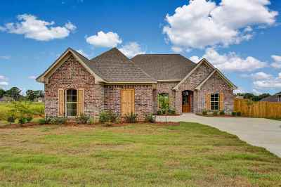 Canton Single Family Home For Sale: 205 Sweetbriar Cir